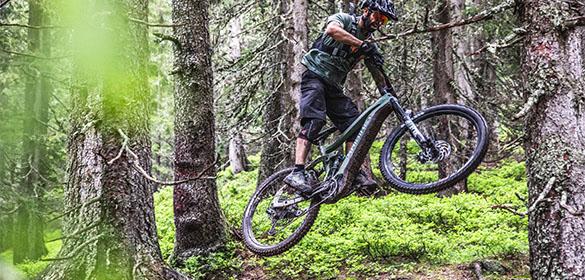 Haibike E-Mountainbikes
