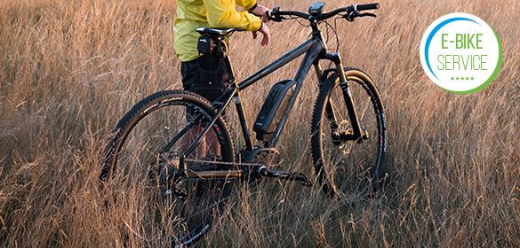 E-Bike Service